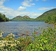Jordan Pond by Jack Ryan