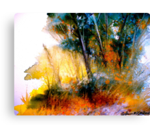 Wild Thicket.. Canvas Print