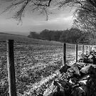 Chevin Dry Stone Wall #1 Mono by Colin Metcalf