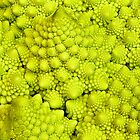 Romanesco Cauliflower Macro by Nick Boren