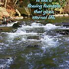 John 4:14 by Paula Tohline  Calhoun