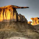 Bisti/De-Na-Zin Wilderness Golden Wings by Bob Christopher
