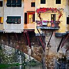 Autumn Ponte Vecchio by Rae Tucker