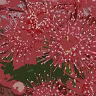 Gum blossoms by Teangi Chambers