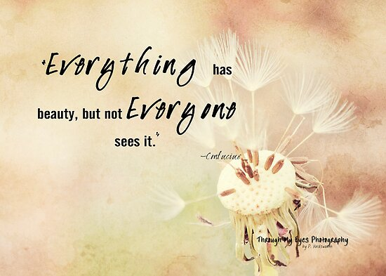 Beauty in Everything by Pamela Holdsworth