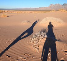Shadows on dunes by zumi