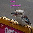 Kookaburra Merry Christmas 3 by Pauline Tims