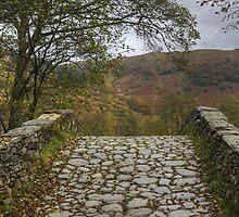 The Bridge In Borrowdale by Jamie  Green