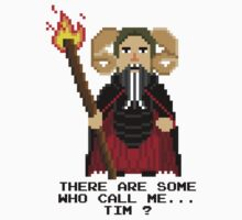 Tim the Enchanter - Monty Python and the Holy Pixel by Gwendal