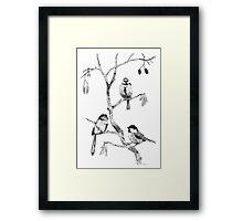 Small Garden Birds Framed Print