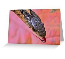 Garter Snake Portrait Greeting Card