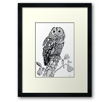 Tawny Owl (cropped version) Framed Print