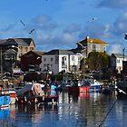Mevagissey port by Ashley Wells