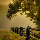 Fences by TaylorAXO
