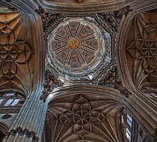 Spain. Salamanca. New Cathedral. Vaults. by vadim19