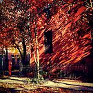 Waverly Place Autumn - Greenwich Village, New York City by SylviaS