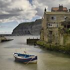 Staithes, North Yorkshire by Steven  Lee
