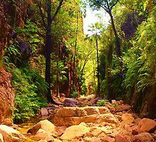 El Questro Gorge, Western Australia by Jillian Holmes