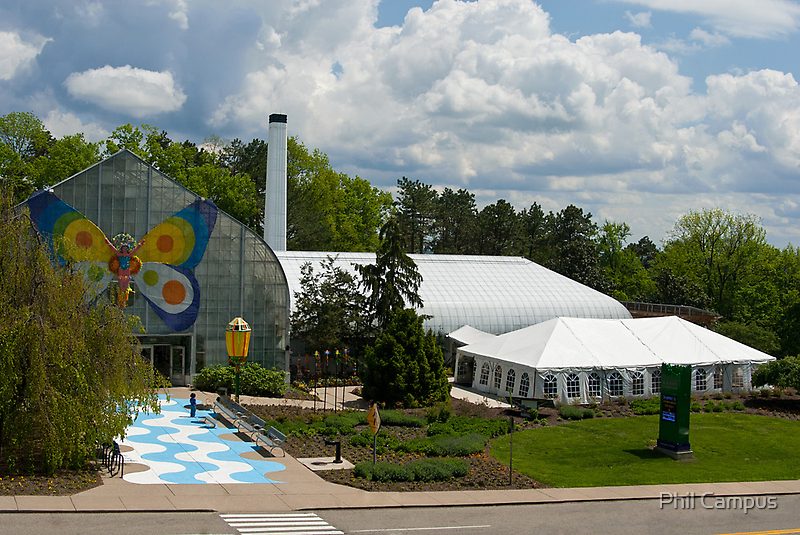 Krohn Conservatory  by Phil Campus