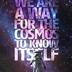 Cosmos  by Zacharydarren