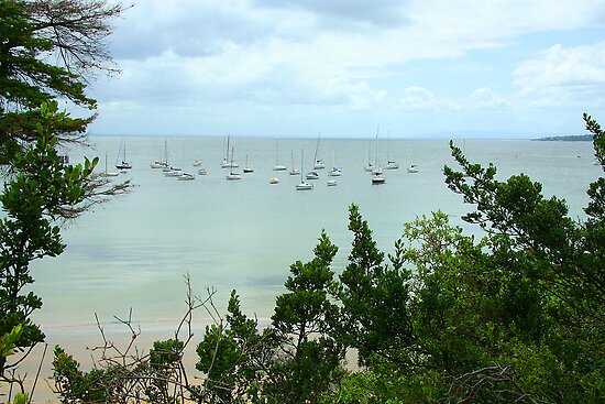 Boats moored off Mornington by Maggie Hegarty