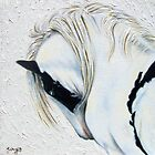 Gypsy Vanner Paintings by Tahnja