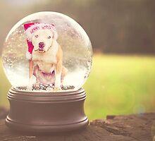 Merry Snowglobe by Zdogs
