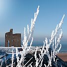seasonal view of ballybunion castle in snow by morrbyte