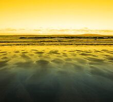 windswept sunset winter beach view by morrbyte