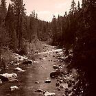 San Joaquin River by Socrates & Angela Hernandez