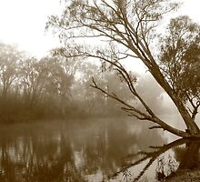 Goulburn Morn by phillip wise