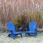 Adirondack Chairs by Kelly Morris