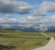 The Long and Winding Road by carolavila