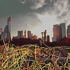 Sunset in New York by Eugenia Gorac