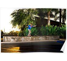 Neen Williams - Backside Tailslide - Santa Ana, CA - Photo Bart Jones Poster