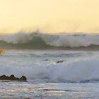 Sunset Surfer by Anthony 'Bones' Dryden