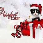 Cat in a Santa Hat Christmas Card by Doreen Erhardt