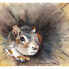 Squirrel in a hollow log by Lynn Oliver
