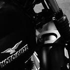Moto Guzzi by Piaggio by Jeanette Varcoe.