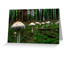 March Of The Fairy Ring Greeting Card