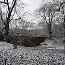 Central Park Snow 2 by WhiteDiamond