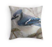 A Blue Gray Day Throw Pillow