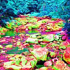 Psychedelic Stream by podspics