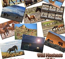 Wild Mustangs of the Virginia Range 2013 by Ellen  Holcomb