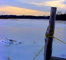 Stuck in ice by Ronee van Deemter