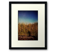 Unexpected Things Framed Print