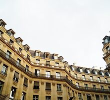 typical building hausmannian style in Paris, France  by hpostant