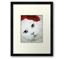Wrapping Presents 101 for Cat Owners Framed Print
