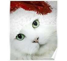 Wrapping Presents 101 for Cat Owners Poster