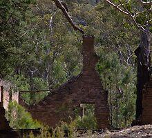 Ruins At Joadja Ghost Town by Mandy  Harvey